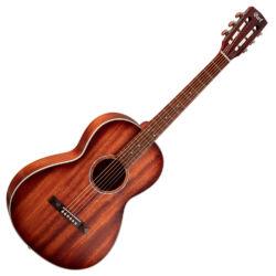 Akusztikus gitár AP550 táskával