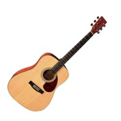 Akusztikus gitár Gewa D1