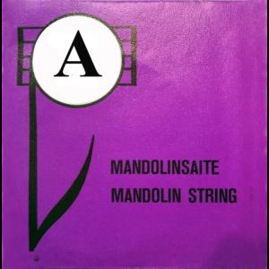 Mandolin húr A