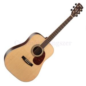 Akusztikus gitár Cort Earth 100 ZR-NAT