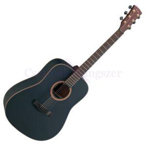 Akusztikus gitár Gewa D1 B