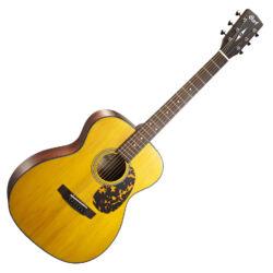 Cort akusztikus gitár, Vintage