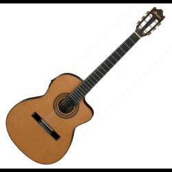 Elektro-klasszikus gitár Ibanez